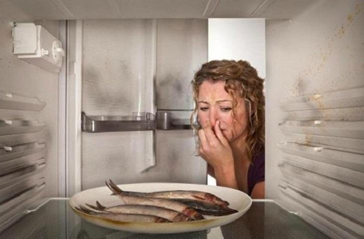 Một số dấu hiệu bất thường của chiếc tủ lạnh cần thay mới_5